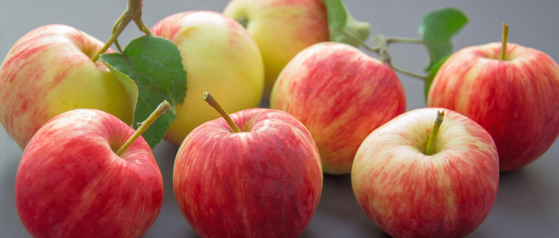 Gottschalk Obst